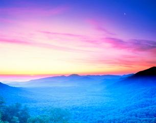 ブナ樹林と大平山の写真素材 [FYI01525004]