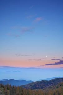 カラマツ木立と満月と浅間山 夕景の写真素材 [FYI01525274]