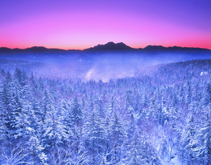 西クマネシク岳方面の朝景 三国峠 北海道の写真素材 [FYI01525449]