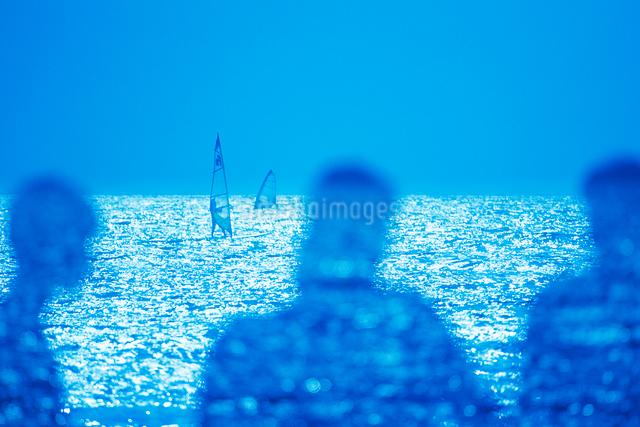 輝く海とウィンドサーフィンの写真素材 [FYI01525573]