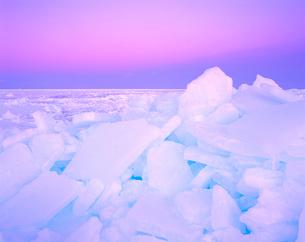 流氷の夕景の写真素材 [FYI01525945]