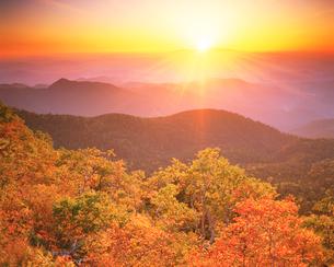 樹林と山並と夕日(白山方向)の写真素材 [FYI01526126]