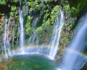 幕滝と虹の写真素材 [FYI01526754]