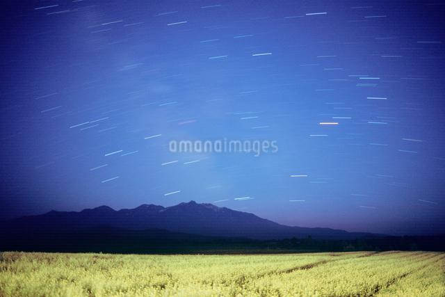 菜の花畑と大雪山と星空の写真素材 [FYI01526762]