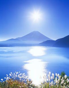 ススキと本栖湖と富士と太陽の写真素材 [FYI01527454]