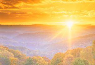 秋の樹林帯の夕景の写真素材 [FYI01527641]