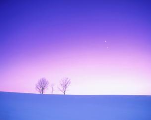 金星と土星の接近の写真素材 [FYI01527774]