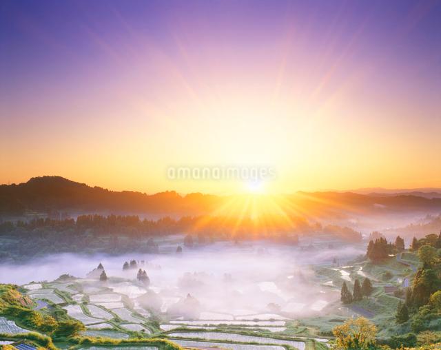 棚田の朝 守門岳方向の風景の写真素材 [FYI01528471]