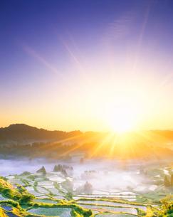 棚田の朝 守門岳方向の風景の写真素材 [FYI01528536]