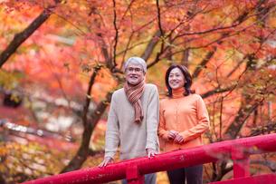 紅葉狩りをする中高年夫婦の写真素材 [FYI01530144]