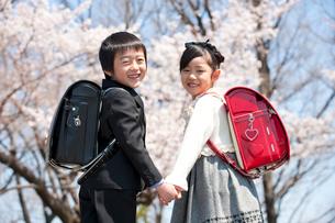 桜と新入学のランドセルの小学生男女の写真素材 [FYI01530671]