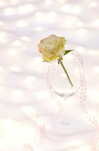 ワイングラスとネックレスとバラの花の写真素材 [FYI01530801]