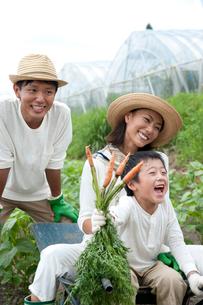 畑の中で収穫した人参を持つ男の子と両親の写真素材 [FYI01530840]