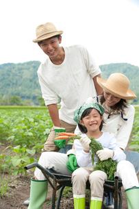 畑の中で一輪車に乗る三人家族の写真素材 [FYI01530851]
