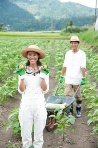畑の中で作物を収穫する20代カップルの写真素材 [FYI01530898]