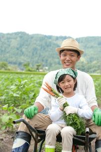 畑の中で父と一輪車に乗る女の子の写真素材 [FYI01530971]