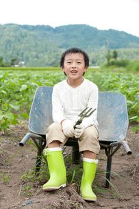 畑の中で一輪車に腰掛ける男の子の写真素材 [FYI01531056]