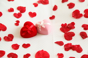 ピンクと赤のジュエリーボックスとバラの花びらの写真素材 [FYI01531228]
