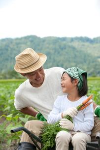 畑の中で父と一輪車に乗る女の子の写真素材 [FYI01531274]