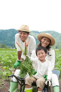 畑の中で一輪車に乗る三人家族の写真素材 [FYI01531320]