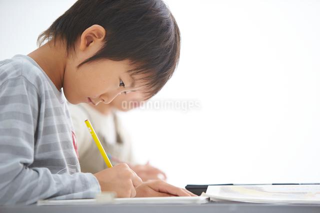 授業中の小学生低学年男女の写真素材 [FYI01531653]