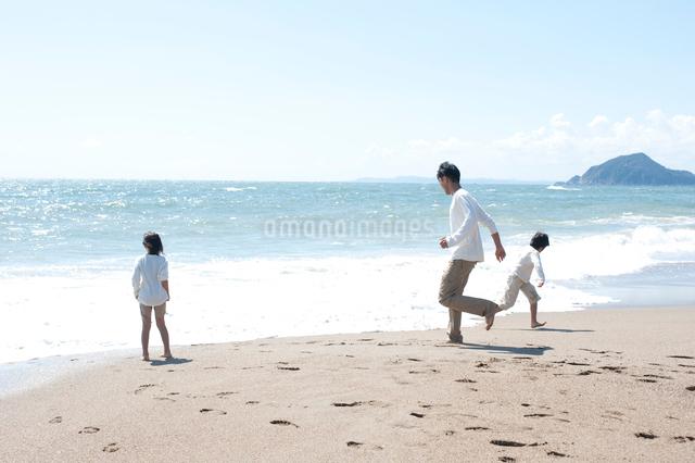 海辺で遊ぶ父と子供男女後姿の写真素材 [FYI01531710]