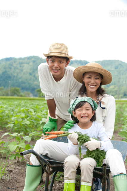 畑の中で一輪車に乗る三人家族の写真素材 [FYI01531719]