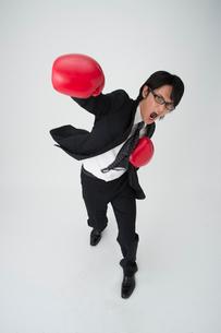 ボクシングするビジネスマンの写真素材 [FYI01532001]