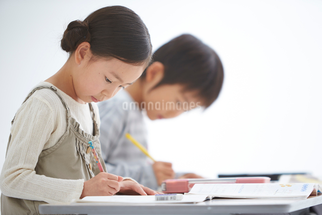 授業中の小学生低学年男女の写真素材 [FYI01532876]