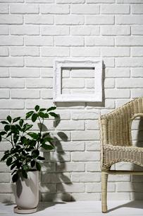 白い額縁と観葉植物と籐の椅子の写真素材 [FYI01533447]