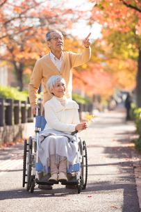 車椅子のシニア夫婦の写真素材 [FYI01533755]