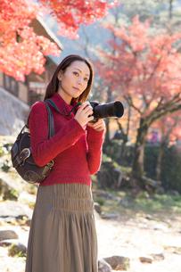 紅葉をカメラで撮影する女性の写真素材 [FYI01533757]