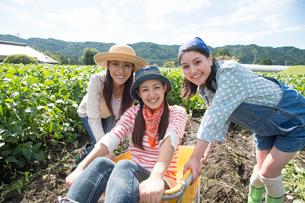 畑で一輪車で遊ぶ女性三人の写真素材 [FYI01534019]