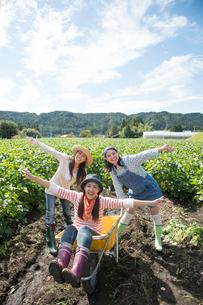 畑で一輪車で遊ぶ女性三人の写真素材 [FYI01534837]
