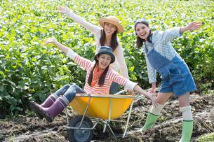 畑で一輪車で遊ぶ女性三人の写真素材 [FYI01535153]
