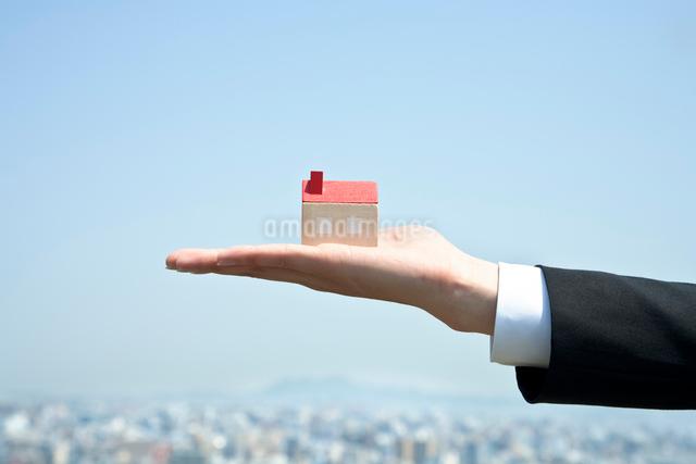 手のひらの上にある積み木の家の写真素材 [FYI01535921]