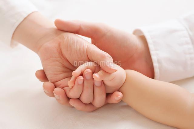 手をつなぐ親子の写真素材 [FYI01536013]