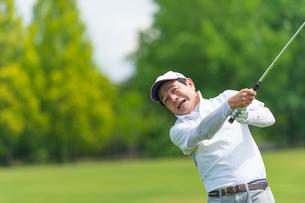 ゴルフをする中高年男性の写真素材 [FYI01536157]