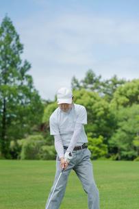 ゴルフをする中高年男性の写真素材 [FYI01536582]