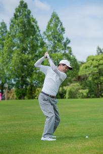 ゴルフをする中高年男性の写真素材 [FYI01536597]