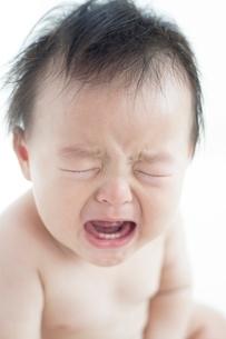 泣く赤ちゃんの写真素材 [FYI01538012]