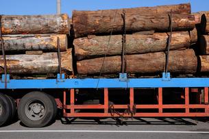 木材を積んだトラックの写真素材 [FYI01539072]