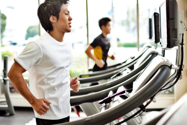 ジムで運動する男性の写真素材 [FYI01539275]