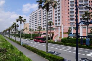 舞浜のホテル群と道の写真素材 [FYI01539473]