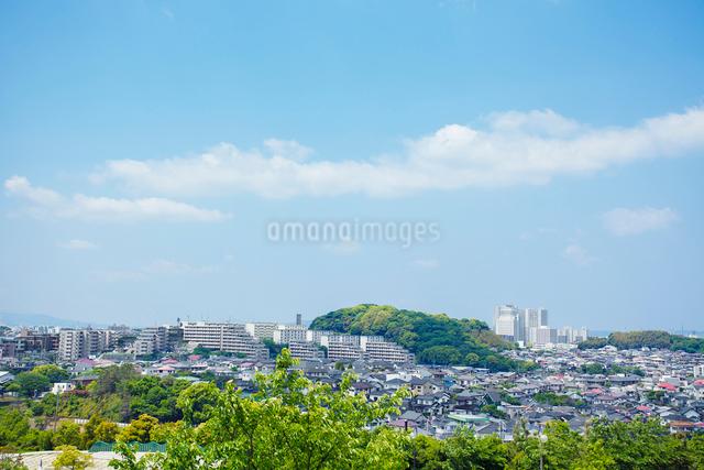 青空と街並の写真素材 [FYI01539855]