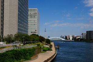 中央大橋から見る永代橋の写真素材 [FYI01540562]
