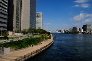 中央大橋から見る永代橋の写真素材 [FYI01540599]