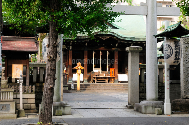 鉄砲洲稲荷神社の写真素材 [FYI01540720]