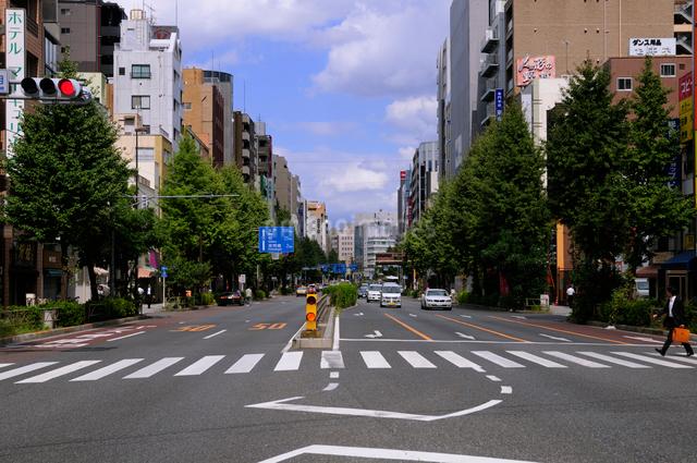 江戸通り [FYI01541505]   ロイ...