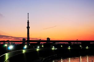 首都高と東京スカイツリーの写真素材 [FYI01541961]
